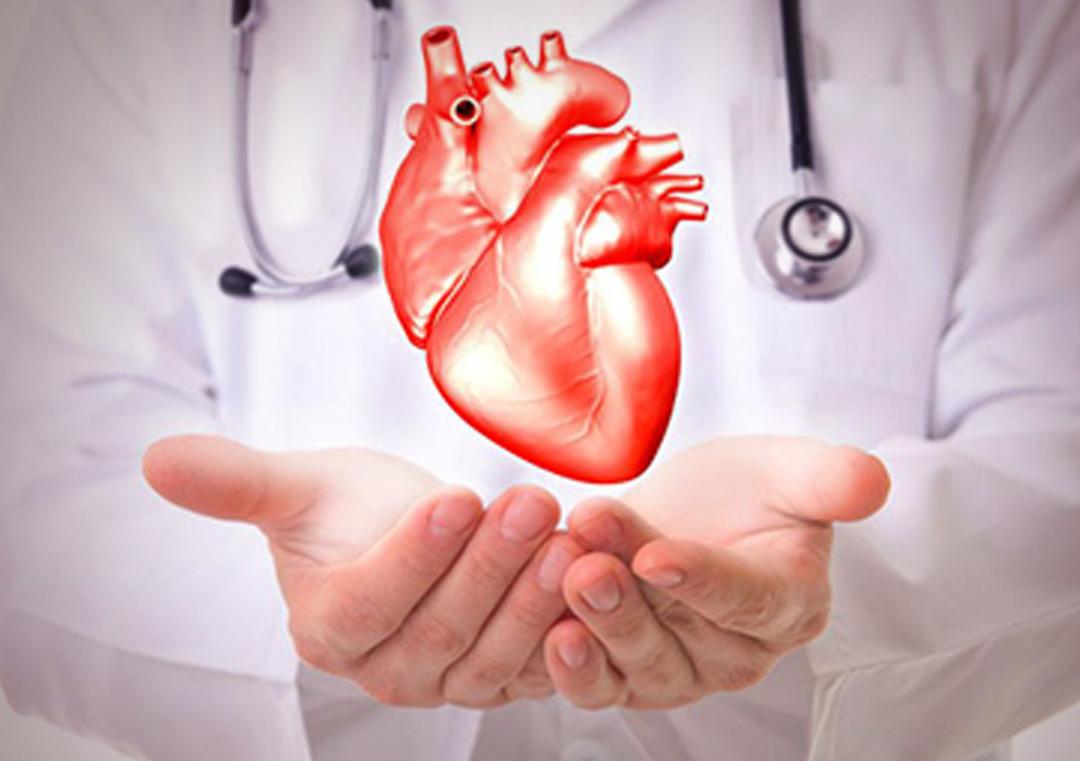 Cirurgia Cardíaca Adulto e Infantil
